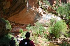 Emerald Pool Trails (mike_jacobson1616) Tags: zionnationalpark zion nationalparks emeraldpoolstrail emeraldpools