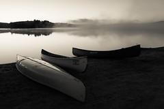 Influential Insomniac (Bert CR) Tags: algonquin algonquinpark nature ontarioparks ontarioprovincialpark park provincialpark insomniac dawn morninglight mistymorning mist canoe three
