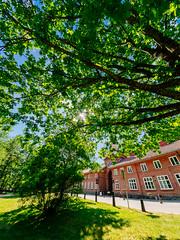 Fiskars (miemo) Tags: samyang75mmf35 building em5mkii europe finland fisheye fiskars foliage olympus omd redbrick street summer sunlight sunshine trees wideangle raseborg uusimaa fi