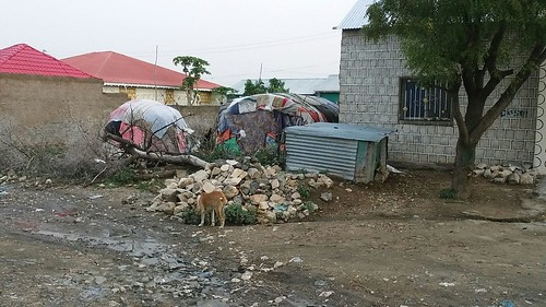 Rich and poor in Borama