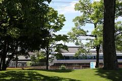 Through the forest (yukky89_yamashita) Tags: osaka shimamoto 大阪 島本町 jr japan train jr西日本 サンダーバード forest