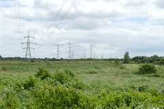 Rainham Marshes (Loz Flowers) Tags: london londonloop londonloopwalktwentyfour rainham rainhammarshes pylons electricitypylons