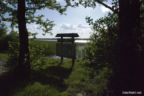 Шацький Національний Природний Парк Озеро Луки Перемут InterNetri  Ukraine 02