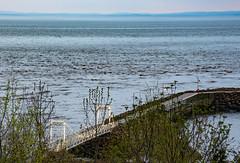 IMG_3535 P (BLEUnord) Tags: charlevoix lamalbaie stlaurent stlawrence fleuve river québec canada printemps spring pont bridge soir evening