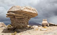 Altiplano (Rolandito.) Tags: south america südamerica sudamérica amérique du sud bolivia bolivie bolivien altiplano landscape rock