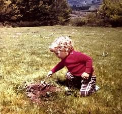 Je ne suis plus un perdreau de l'année...mais il faut rester curieux...Je ne suis plus qu'à une marche du podium de la cinquantaine...oui déjà... (NUMERIK33) Tags: enfance 49 anniversaire temps vie