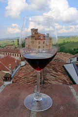 Glass of Barolo (Tomek Sz) Tags: wine barolo red village green blue grapes relax free time