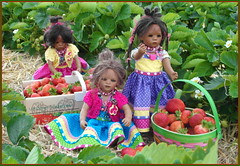 Die Minis auf dem Erdbeefeld ... (Kindergartenkinder 2018) Tags: annette himstedt dolls leleti reki kindergartenkinder erdbeeren
