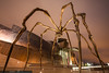 Spider in front of the Guggenheim Museum (Bilbao) (no.zomi) Tags: bilbao europa spain spanien welt a7rii sony zeiss carl variotessartfe41635