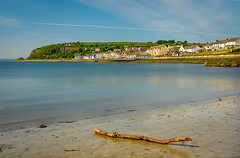 Washed Up (Alan RW Campbell) Tags: sand ireland vibrant fujix driftwood fujifilm sea blue beach vivid coastal whitehead sky northernireland xt223mm countyantrim coast branch