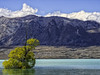 Lake Tekapo: Textures and Shadows (desimage) Tags: laketekapo newzealand textures shadows water mountains
