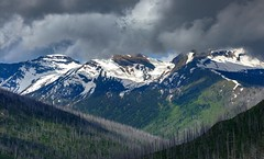 Glacier in the Clouds (Cole Chase Photography) Tags: montana glaciernationalpark clouds goingtothesunroad