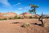 20121020 Utah 12 005.jpg (Alan Louie - www.alanlouie.com) Tags: utah landscape torrey unitedstates us usrockymountain