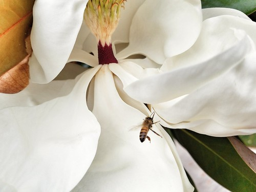 """sdj1065 