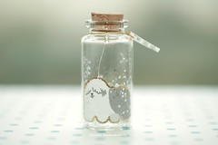 There is no one like you,Tiny message in a bottle,Miniatures,Personalised Gift,love card,Valentine Card,Gift for her/him,Girlfriend gift, birthday card, message card and funny card ideas (charles fukuyama) Tags: oldenglishsheepdog puppy dog handmadecard miniaturescard glitter custommade paperart homedecor deskdecoration cuteanimals pet tiny bottle partycard holidaycard greetingcard lovecard kikuike