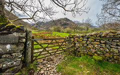 Gateway to Borrowdale, Cumbria. (steve.gombocz) Tags: sceneryshooting simplylandscapes cumbria westcumbria colour colours color colourmania natureisbeautiful lakedistrict lakedistrictuk out outandabout outdoors landscapephoto landscapephotography landscapephotograph landscapepicture scenery gate stonewall wall drystonewall landscapescenes mountain hill crag fell nature natureviews nicepicture flickrlandscapes flickrscenery explorelandscapes explorescenery nikon nikonfx nikonusers nikond810 nikon140240mmf28 nikoncamera nikkor green flickraddict