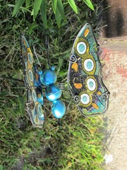 Glass butterfly (creed_400) Tags: belmont west michigan spring june yard glass butterfly