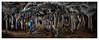 Coventosa - Sala de los fantasmas (Sorginetxe (Iñigo Gómez de Segura)) Tags: cueva cave caving cavidad cantabría columnas espeleología espeleofotografía espeleofotografo espeleotemas espelotema coventosa iñigogomezdesegura ilunpeart fotografíasubterranea speleophotography subterránea