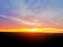2018-06-18_10-30-06 (lillypotpie) Tags: sunset oklahoma june backroads rural fence