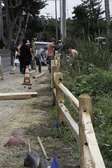 Asilomar Split Rail Fence Project 5-24-18-32 (CSPF Park Champions program) Tags: 52418 parkchampions asilomar