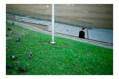 000091720021.jpg (Piotr Braterski) Tags: fujifilm leica m7 elmarit 28mm