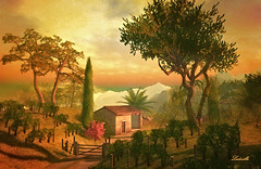 Grapevines fields forever (Milla DelRay) Tags: trees house houses field fields grapevine grapevines country path road sl secondlife nature summer sunset