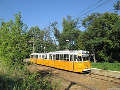A 41-es vilamos a Repülőtérnél (Torontáli Krisztián) Tags: villamos vehicle budapest publictransport kőérberek outdoor railroad transport tram tramway strassenbahn streetcar ganz
