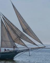 Sailing Away (Ken Mattison) Tags: sailing boats sailboat lakemichigan lake water outdoor people denissullivan schooner panasonic fz1000 milwaukeewisconsin milwaukee wisconsin