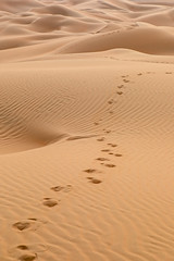 Rub al Khali (Markus Hill) Tags: abudhabi vereinigtearabischeemirate ae uae emirates rubalkhali emptyquarter desert wüste nature landscape canon travel 2018
