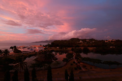 pink twilight