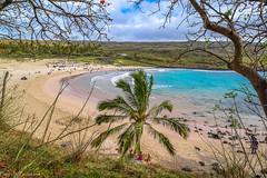 Bay of Anakena / Бухта Анакена (Vladimir Zhdanov) Tags: travel chile polynesia rapanui easterisland ocean water wave landscape sky cloud anakena sand beach people tree grass