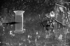 Instants aquatiques alençonnais III (Tonton Gilles) Tags: alençon normandie détail urbain noir et blanc reflets eau rivière sarthe crue parc de la providence