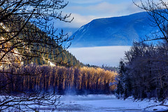The View Along The Flathead River (rebeccalatsonphotography) Tags: mt montana highway2 flatheadriver river winter january snow ice mountain canon trees rebeccalatsonphotography 1dx 100400 telephoto