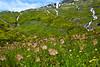 Alpe Pradasca  1'720m – Capanna Bovarina 1'870m – Cima della Bianca  2'893m  - Lago Retico  2'372m (Photo by Lele) Tags: maini daniele fotografia photo montagna mountain panorama landscape ticino switzerland tessin suisse svizzera escursione paesaggio paesage nature natura alps alpi alpen photography escursioni trekking excursion hiking tourism turismo vacanze vacanza holiday tour trip fotografo schweiz adventure alpe pradasca 1720m – capanna bovarina 1870m cima della bianca 2893m lago retico 2372m