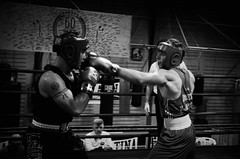 30705 - Hook (Diego Rosato) Tags: boxelatina boxe boxing pugilato nikon d700 2470mm tamron rawtherapee bianconero blackwhite ring match incontro pugno punch hook gancio