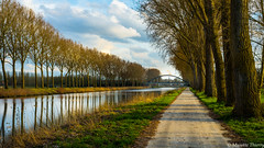 Petite promenade. (musette thierry) Tags: lescaut obigies tournai belgique belgium musette thierry eau printemps d600 50mm18