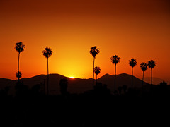 Hotel California (/\ltus) Tags: california socal southerncalifornia sunset sony dschx80 hotelcalifornia
