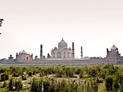 Agra 5 - Taj Mahal from Mehtab Bagh