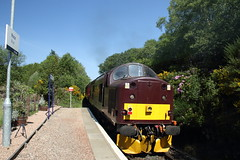 37518 Morar, Scotland (Paul Emma) Tags: uk scotland morar railway railroad dieseltrain train class37 37518 railtour jacobite