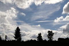 IMG_1083-rth (micter59) Tags: jura longchaumois contrejour nuages paysage arbres ombres ciel