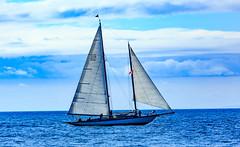 20180526-BC0A1061 (SailingPDX) Tags: 2018 bc inshoreclassic inshoreflying juandefuca may multihulls royalvictoriayachtclub swiftsure the75thswiftsureinternationalyachtrace victoria wind boat club hostedbythervyc httpwwwswiftsureorg ocean race sail sailboat sea takesplacemay2428 watercraft britishcolumbia canada ca