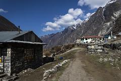 way to  Kyanjin Gompa (Henry der Mops) Tags: langtangtrekgosainkund langtangnationalpark himalaya nepal asia asien bergkette berge mountainrange mountains 90a7312 canoneos7dmarkii henrydermops mplez