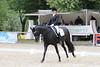 _MG_7940 (dreiwn) Tags: dressage dressur dressuur pferd reitturnier turnierreiten pferdesport horse horseback horseriding equestrian reitverein dressurprüfung kandare doublebridle reiten pferde reitplatz ridingarena