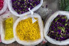 Colors of your flowers (JohannesKruse) Tags: flower flowers market thailand travel wonderlust