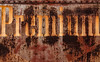 Paramountage (Junkstock) Tags: aged corrosion corroded distressed decay decayed graphics graphic industrial industry illinois irmorg old oldstuff obsolete patina rivets rust rusty rusted textures texture typography type transportation transport trains text train weathered