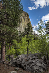 Devil's Tower National Monument (Joe Eisel) Tags: tamronsp2470mmf28divcusd geological laccolithic butte formation boulder rock whitebirch tree trees sky clouds igneous blackhills bearlodgemountain wyoming devilstower