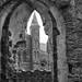 st David's Abbey (davidwalker58) Tags: inexplore flickr nikond850 st davids abbey