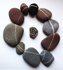 stone circle (amazingstoker) Tags: rock stone circle pebble volcanic stripe vein quartz beach smooth rounded