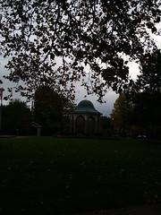 11-05-17 Dayton 59 Newcom Park, Oregon District (Chicagoan in Ohio) Tags: dayton clouds sun sunhalo leaves fallcolor