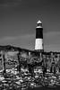 Spurn Point Lighthouse (Bards' POV) Tags: christopherbardenphotography appicoftheweek sigma1750mm canon750d beach rnli yorkshirewildlifetrust naturereserve coastal coast seadefences sea northsea humberestuary lighthouse spurnpointlighthouse spurnhead eastridingofyorkshire yorkshire england greatbritain gb uk